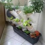 Vives num apartamento e gostavas de ter uma horta em casa? Tens aqui a solução