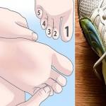 Os sapatos ficam apertados? Este é o método mais simples e eficaz para os alargar!