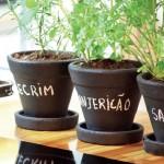 Dicas fantásticas para criar uma horta em vasos